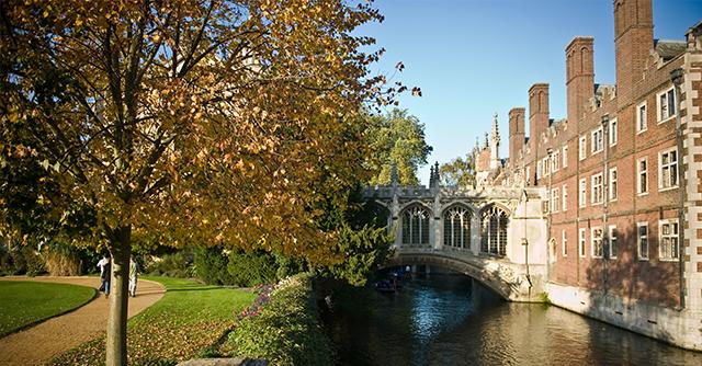 About Cambridge Summer Institute